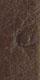 Farbe Kaufmann Uhrenarmband Strauß 11 Dunkelbraun